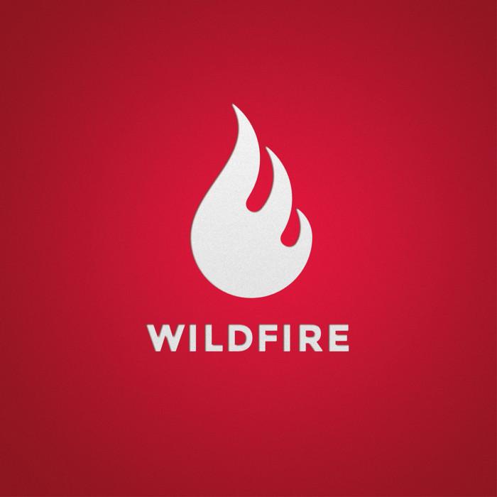 Wildfire Logo 0 MHG Bern