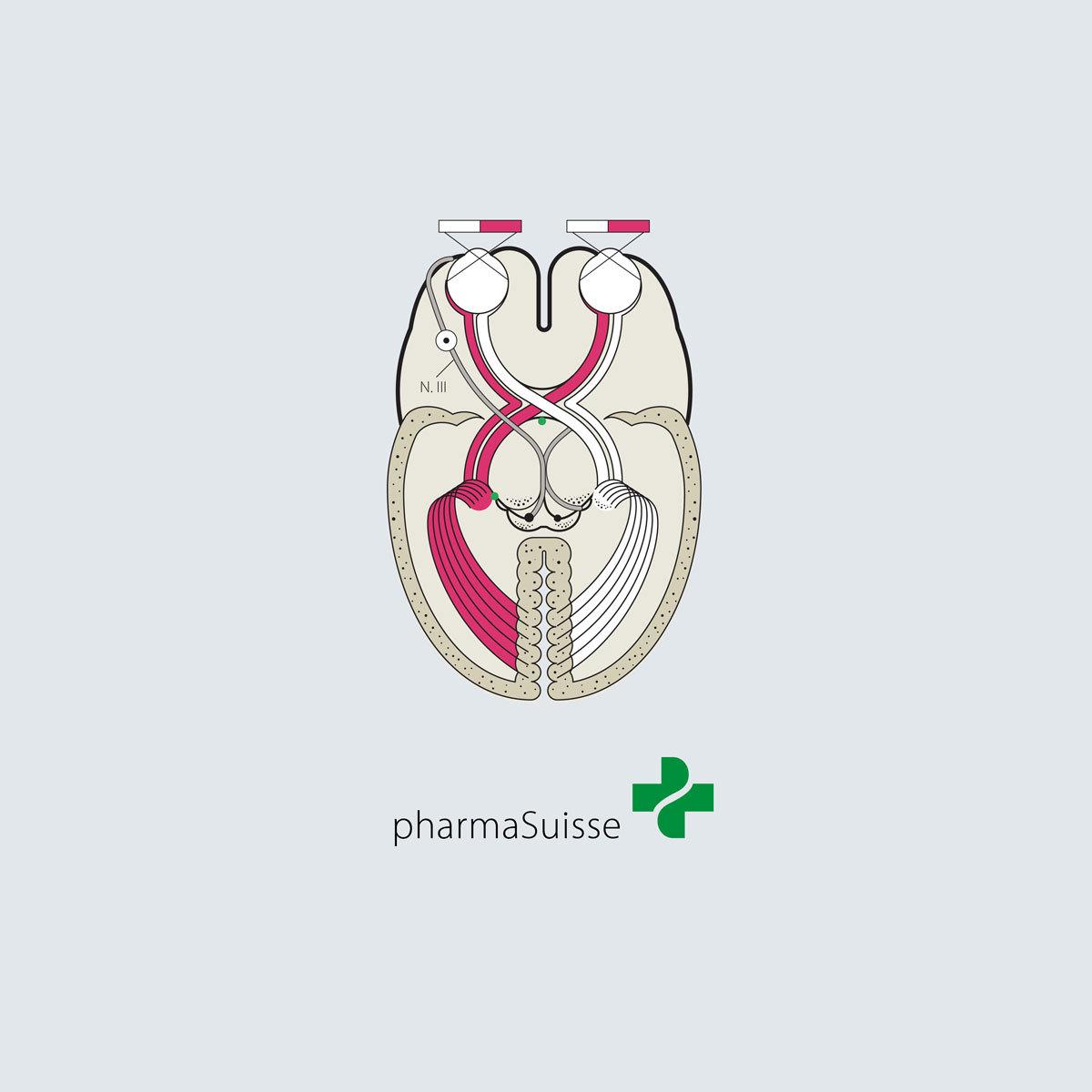 Pharmasuisse Infografiken 00 MHG Bern